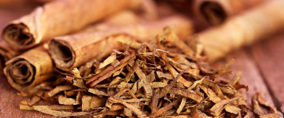 The Truth About Smokeless Tobacco: Does It Cause Cancer?