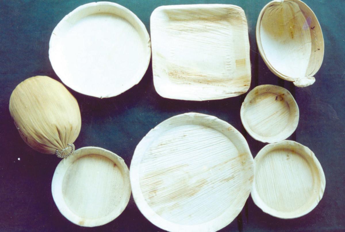 Arecanut leaf sheath heat pressed caps and plates