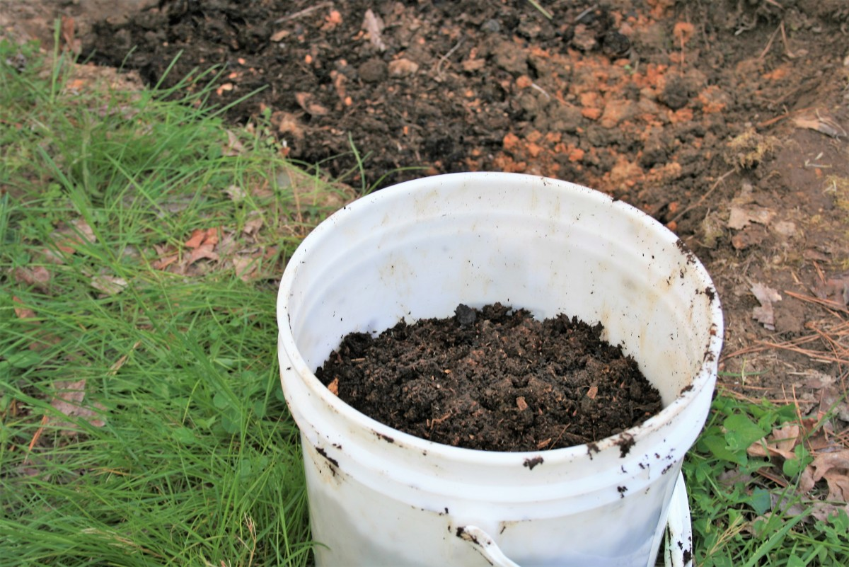 Fill it with about 3 inches of compost topped by dry fertilizer.