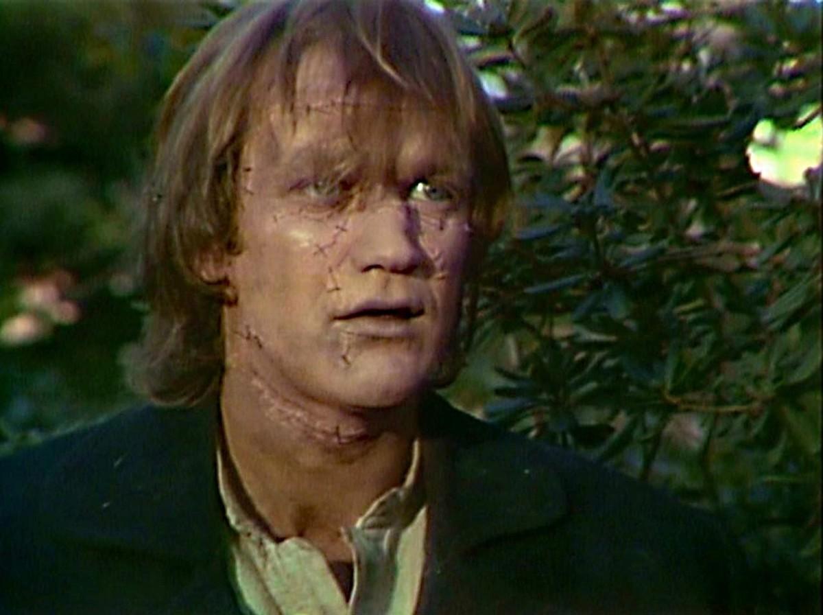 Bo Svenson as Frankenstein's Monster