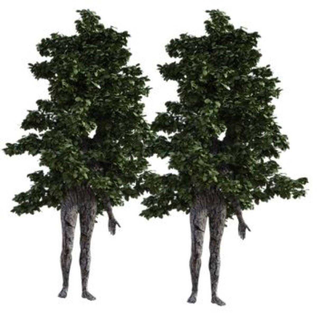 The Symphony of Life Is Like a Tree