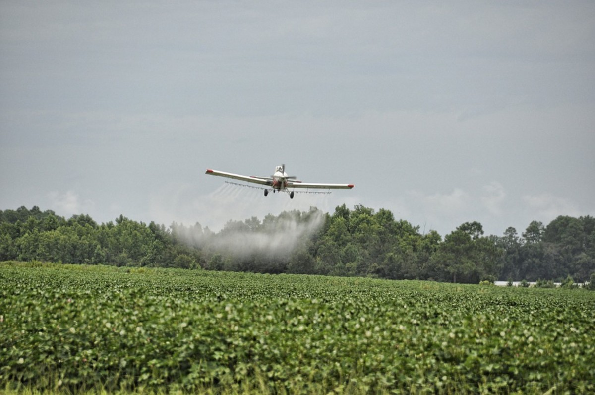 Aerial spray of pesticide in high concentration