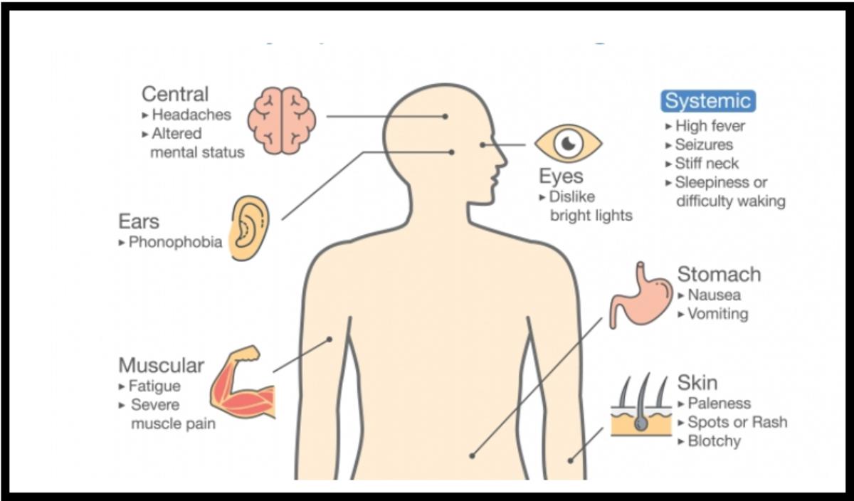 Clinical Manifestations of Meningitis