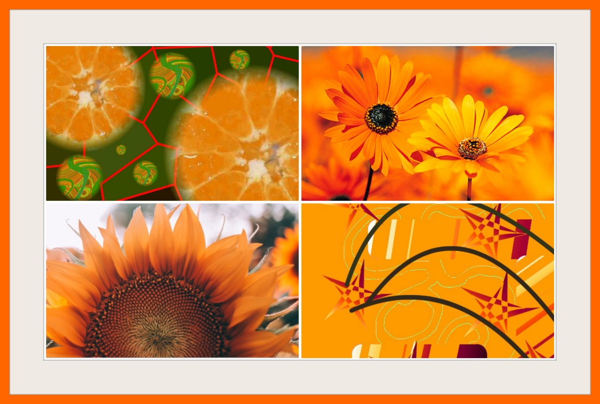 how-does-the-colour-orange-inspire-you