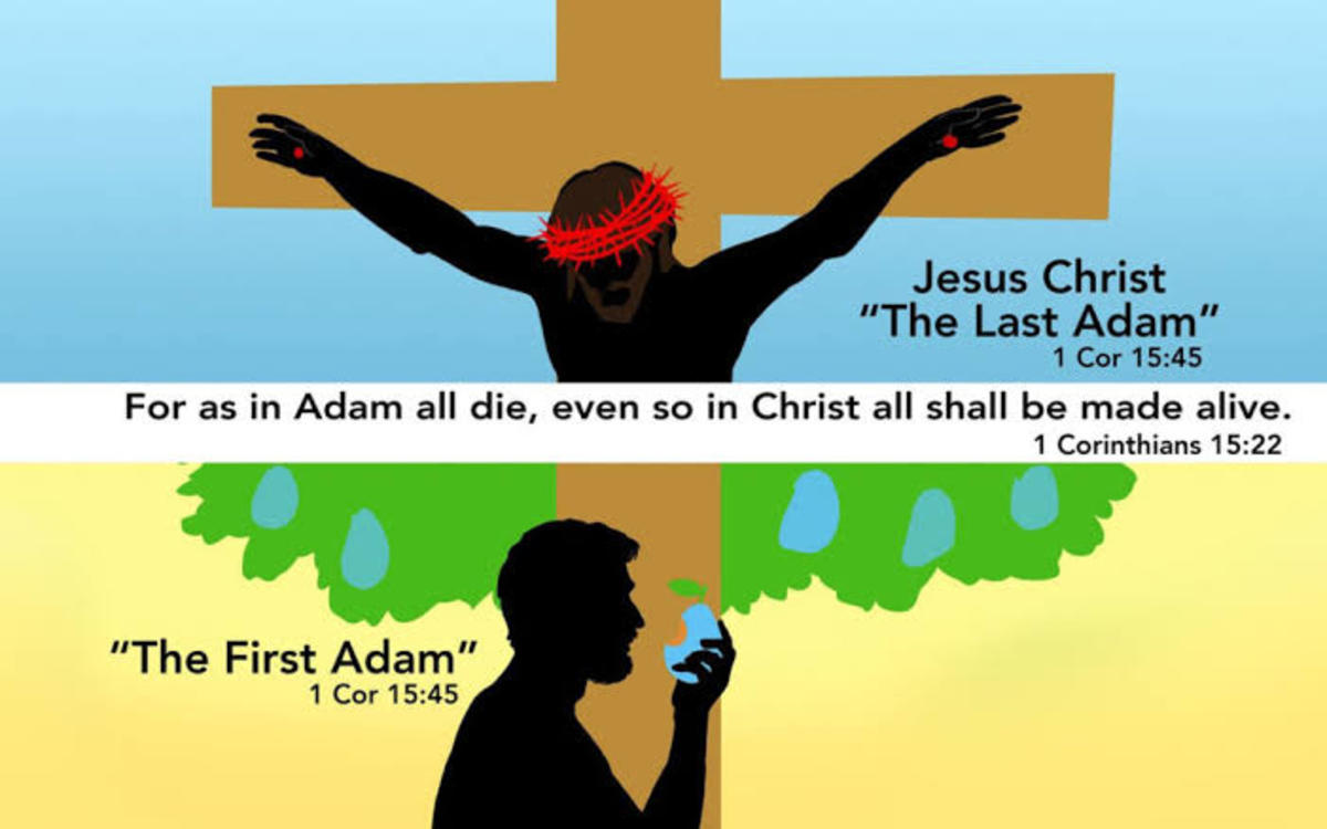 the-first-adam-and-the-last-adam-the-mystery-of-man-in-the-mystery-of-the-word-incarnate