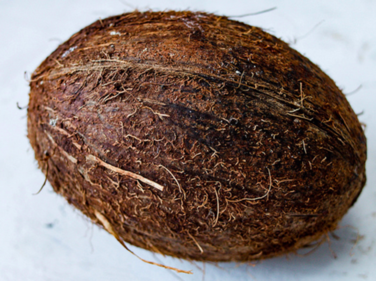 A Pandemic Idea: Coconut Shell Made Into a Facemask, a Unique Way of Maximizing Availability of Materials