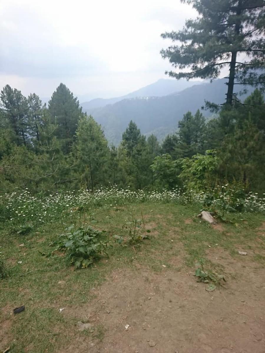 Mukeshpuri Track