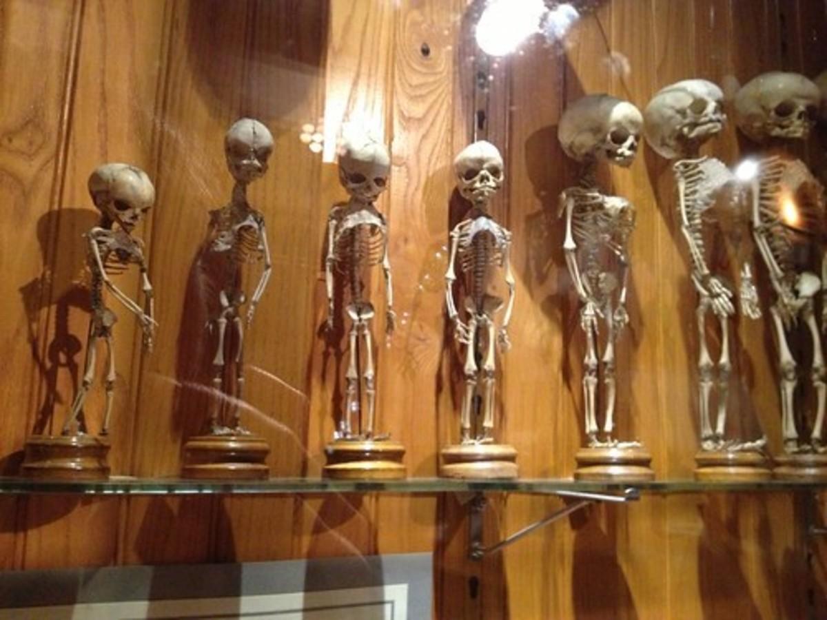 12-weird-museums