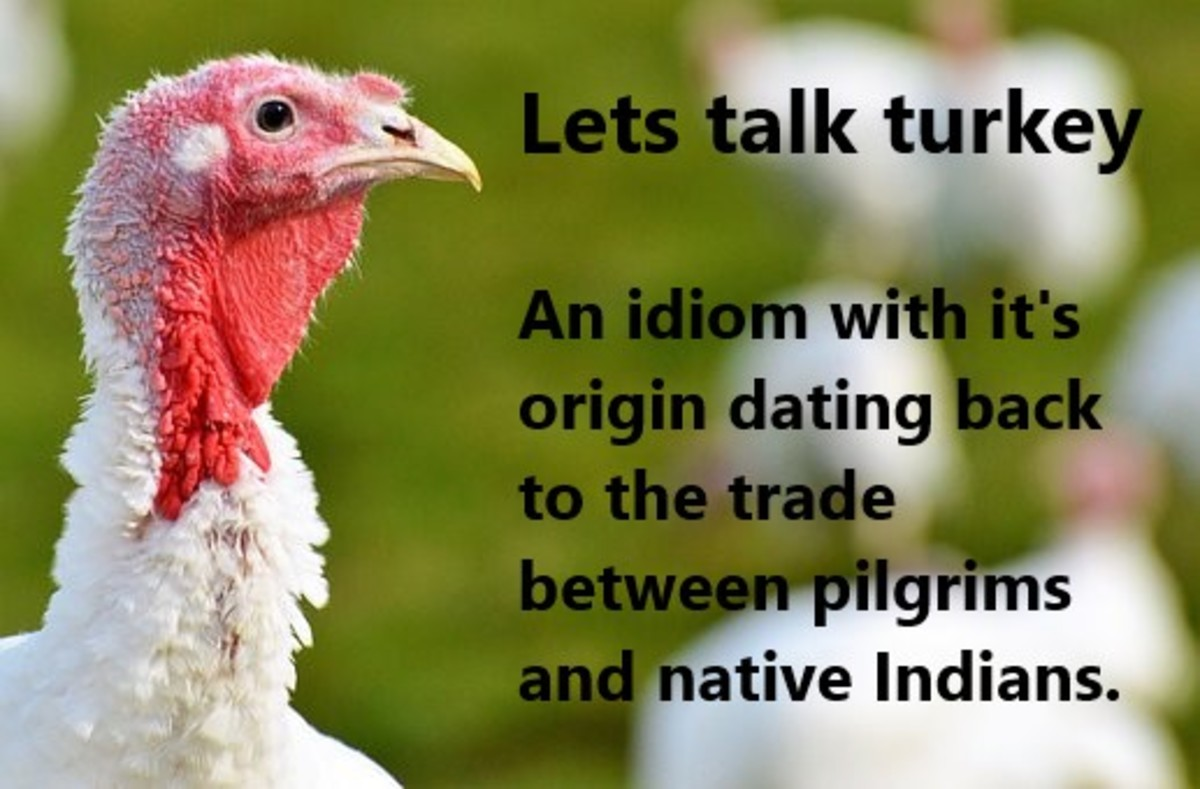 Turkeys are synonymous with the telling of the history of America's pilgrims and their relationship with native Indians.