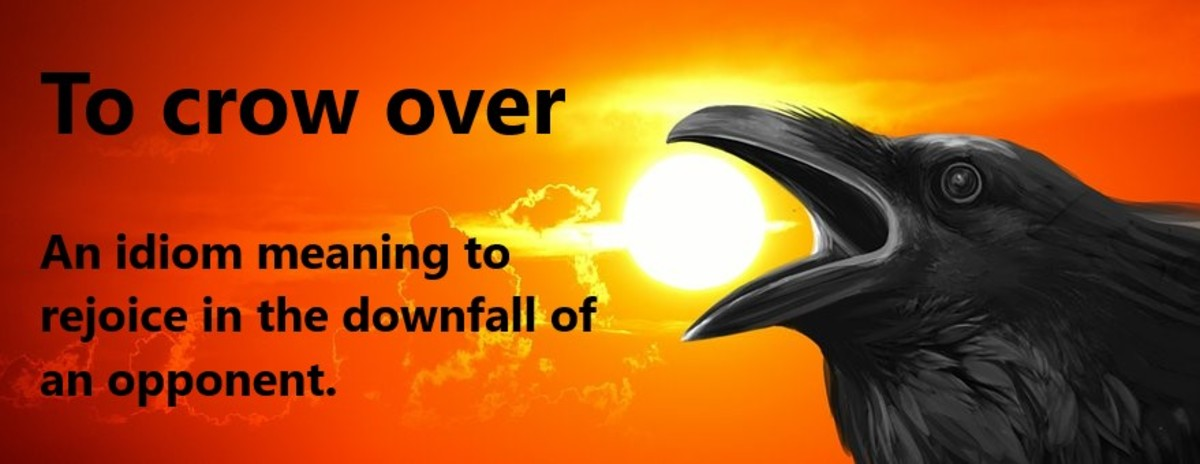 There is something of a paradox here when examining the crow's influence on people. Many consider this bird to be a harbinger of bad luck and death. While others believe the Crow represents life, mystery, and magic. This remarkable creature is also