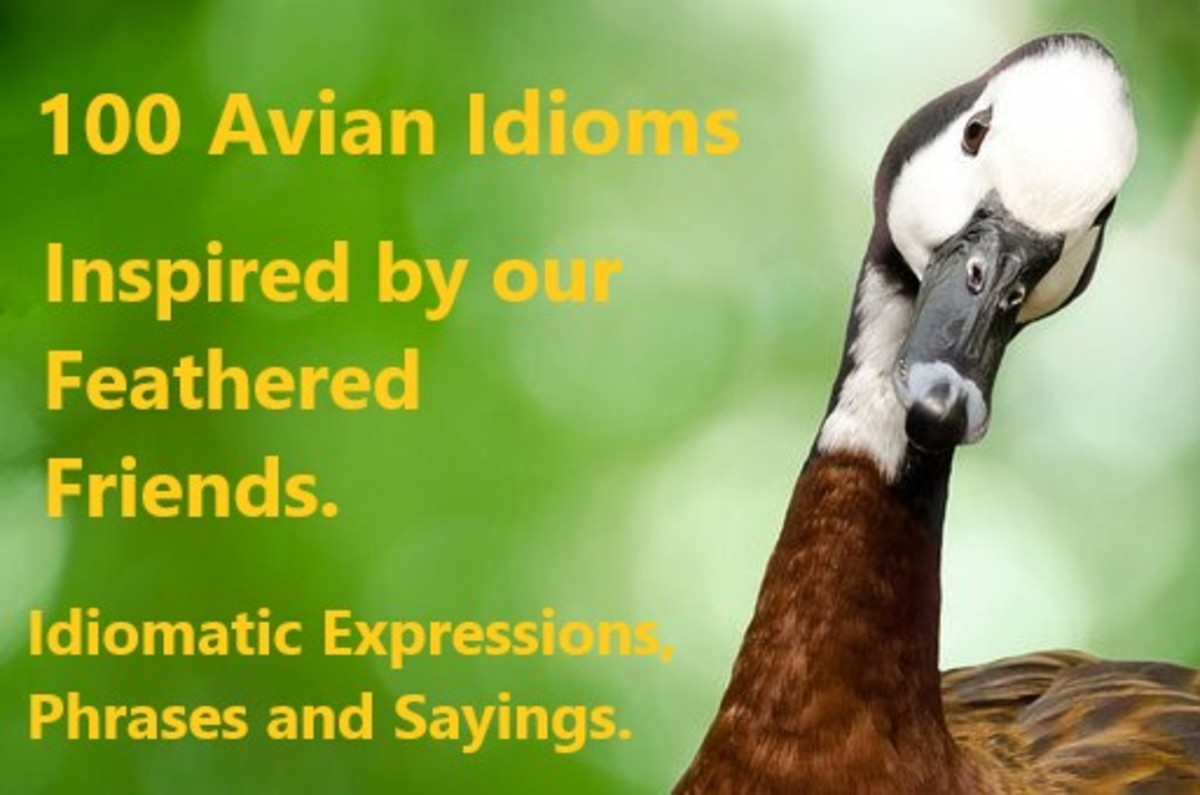 Bird Idioms help create cultural and historical meaning in our language.