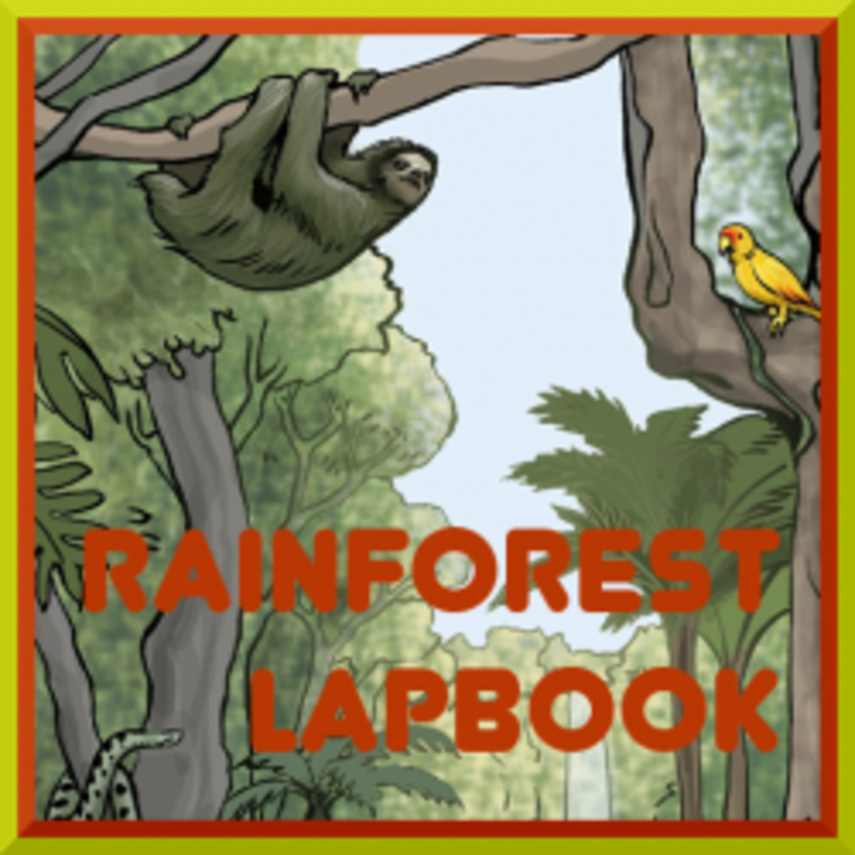 rainforestlapbook