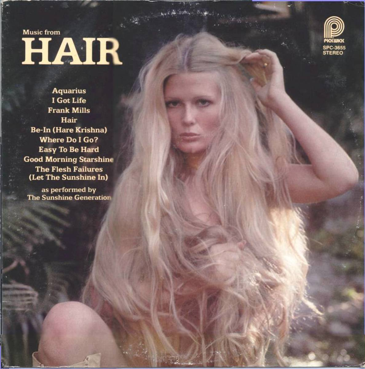 Hair the Album Cover - Bad Hair Day?