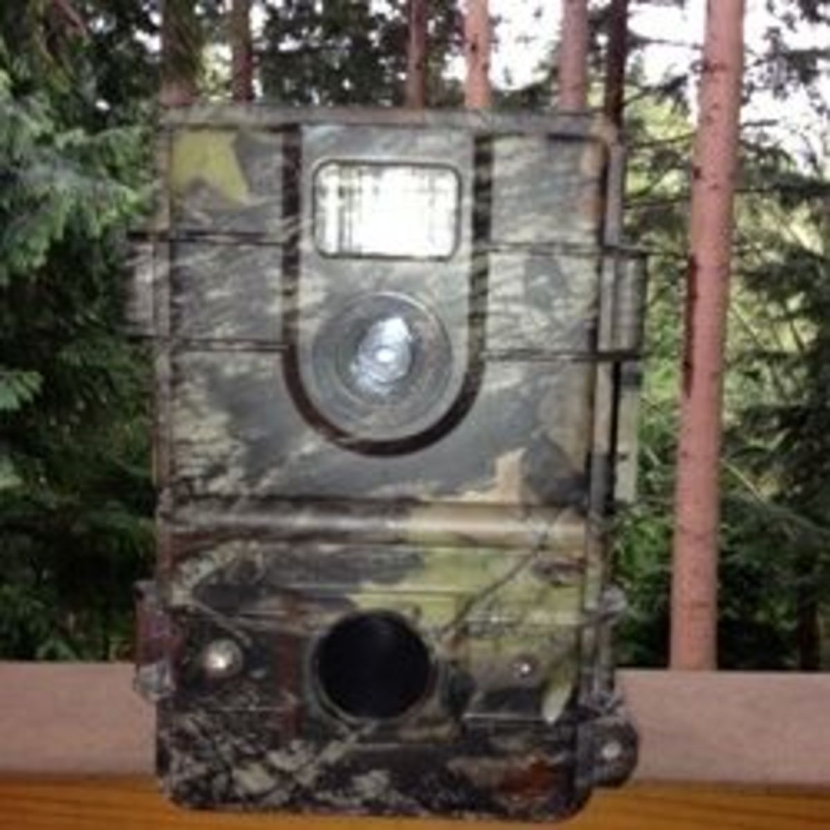 A Motion-Activated Trail Camera