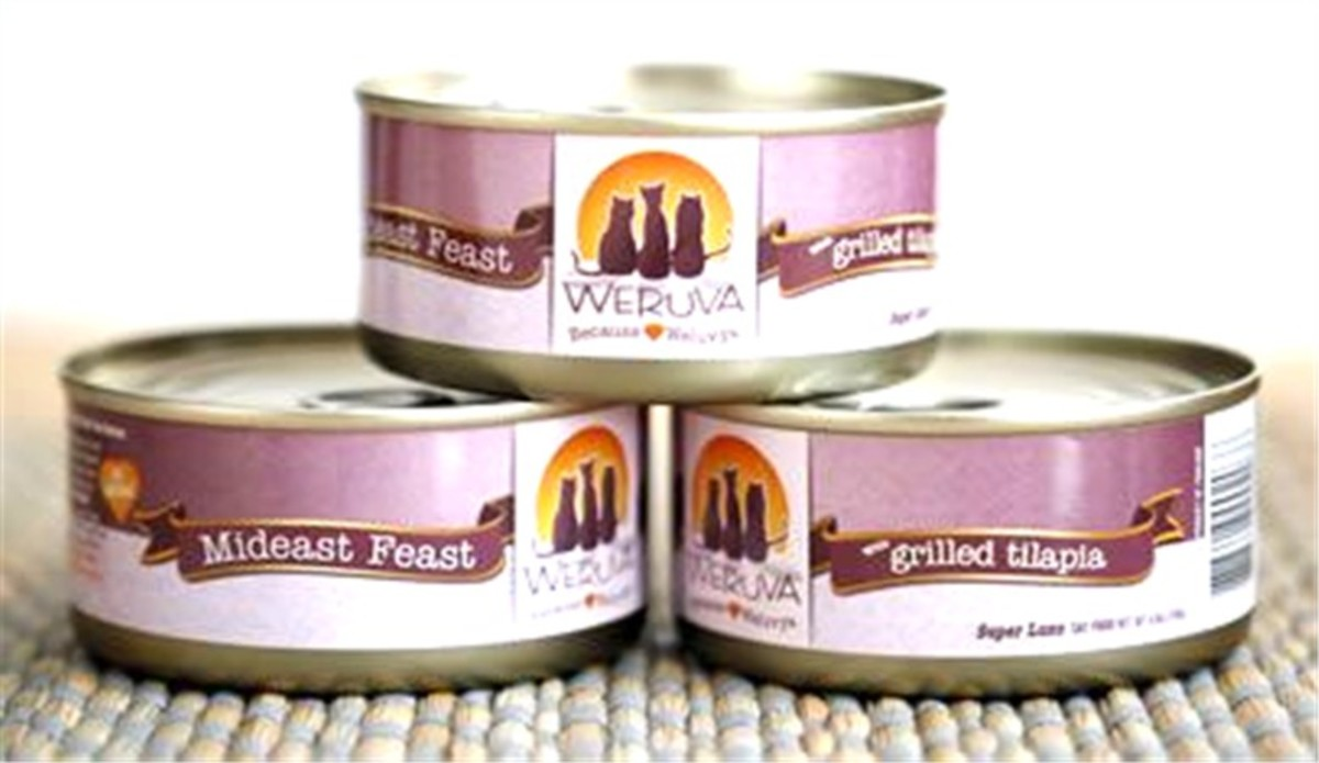 What Pet Stores Carry Holistic Canned Cat Food