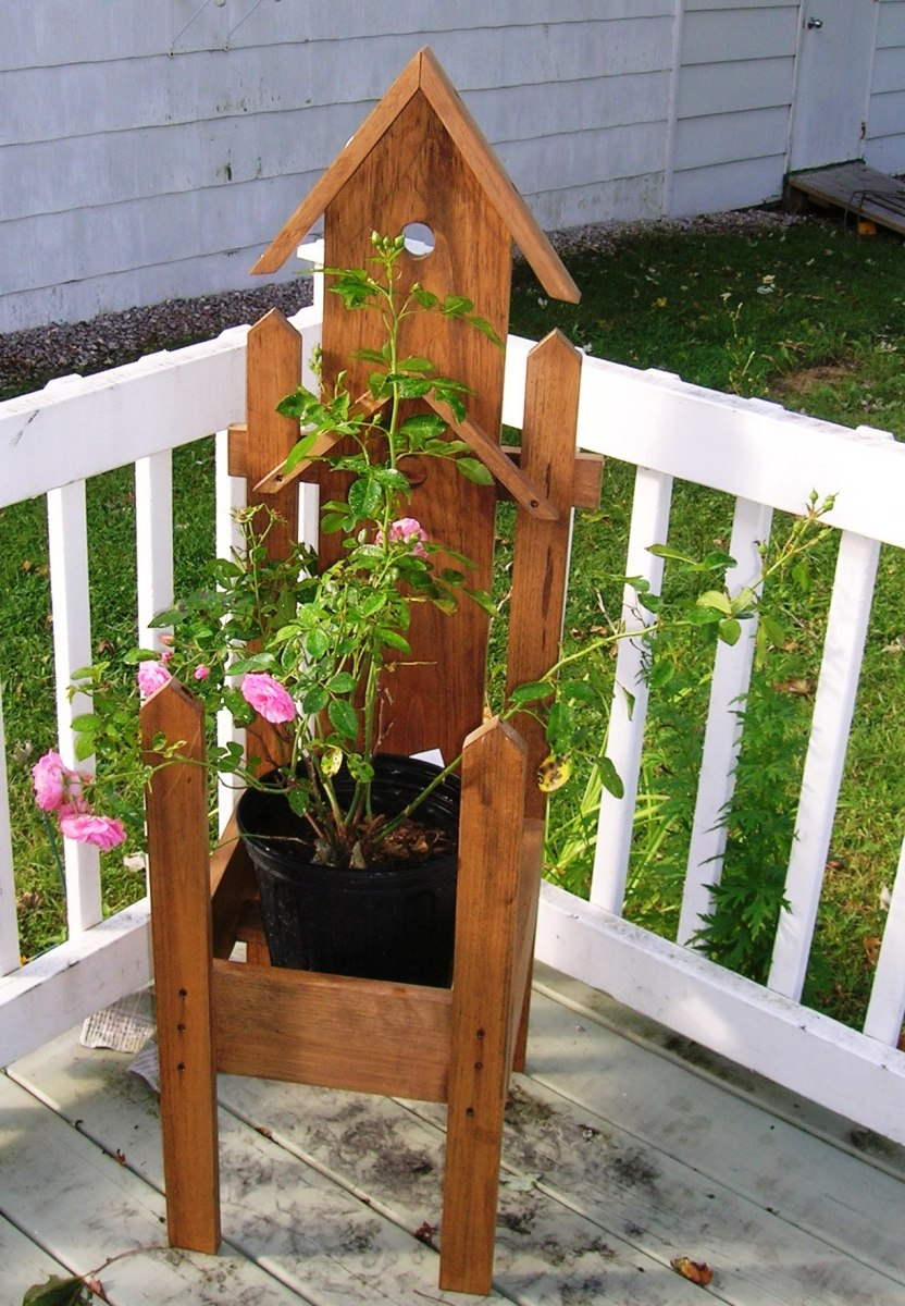 Stand is coming indoors for an ivy plant and rose is headed for the front yard. Bob Ewing photo