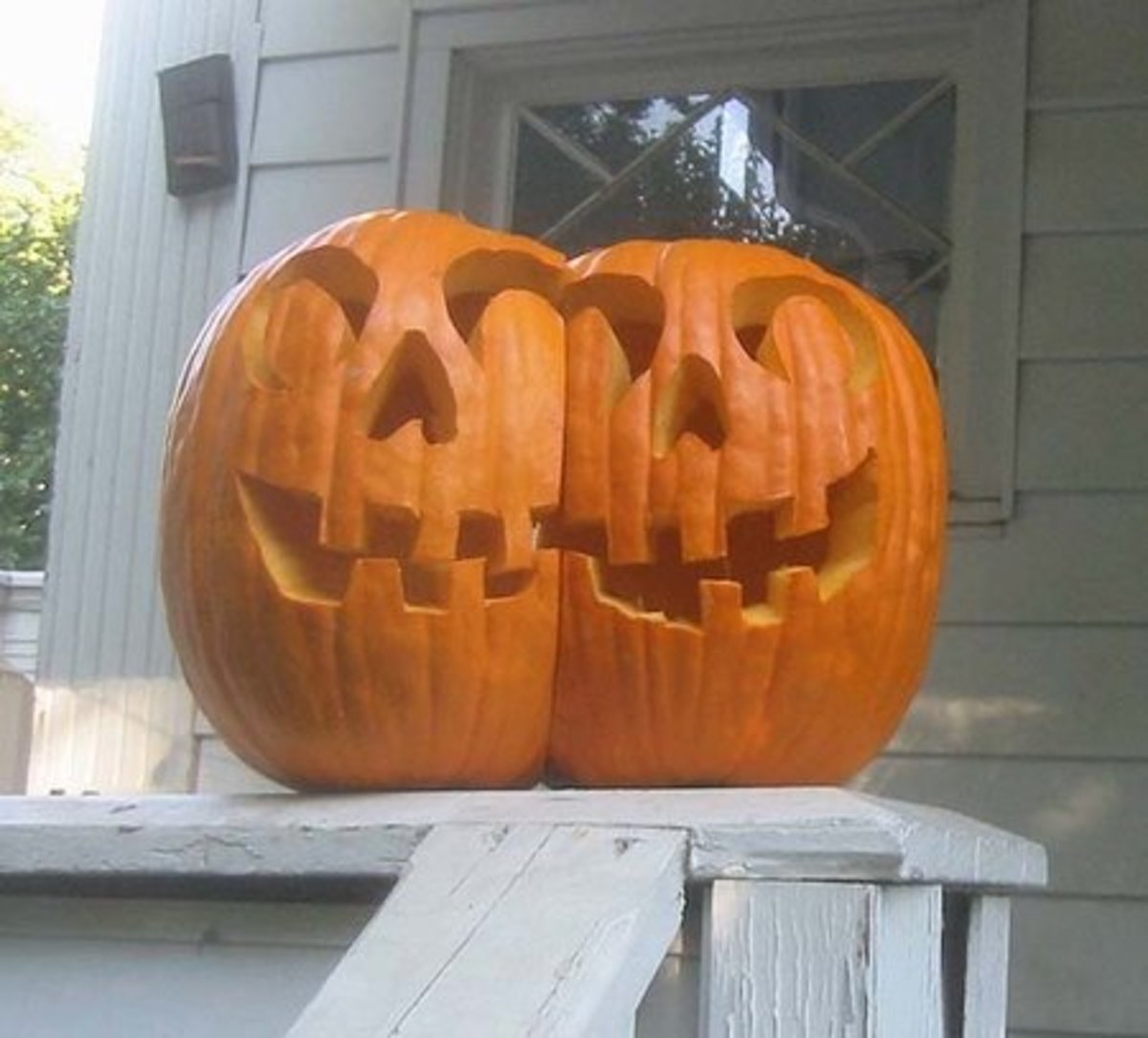 Conjoined twins pumpkins