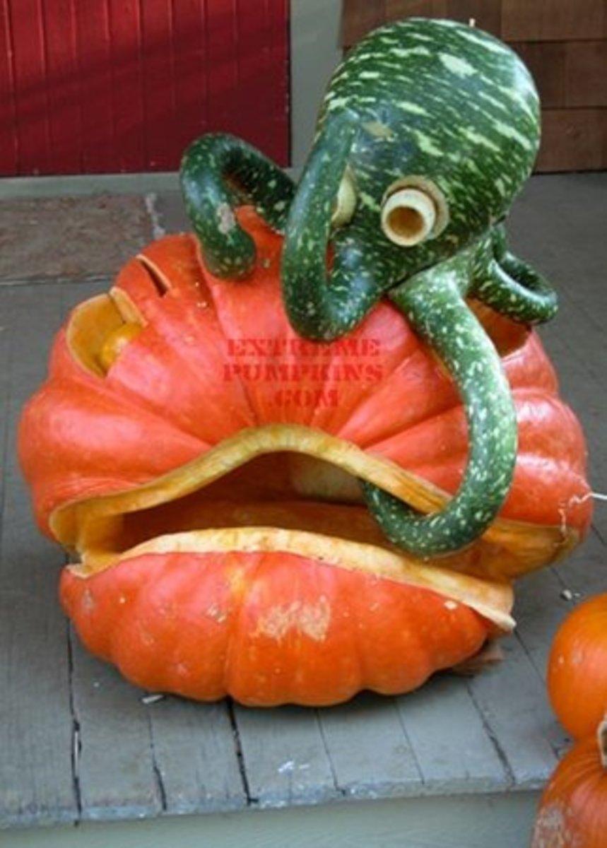 Octopus pumpkin, ExtremePumpkins.com Contest Submission