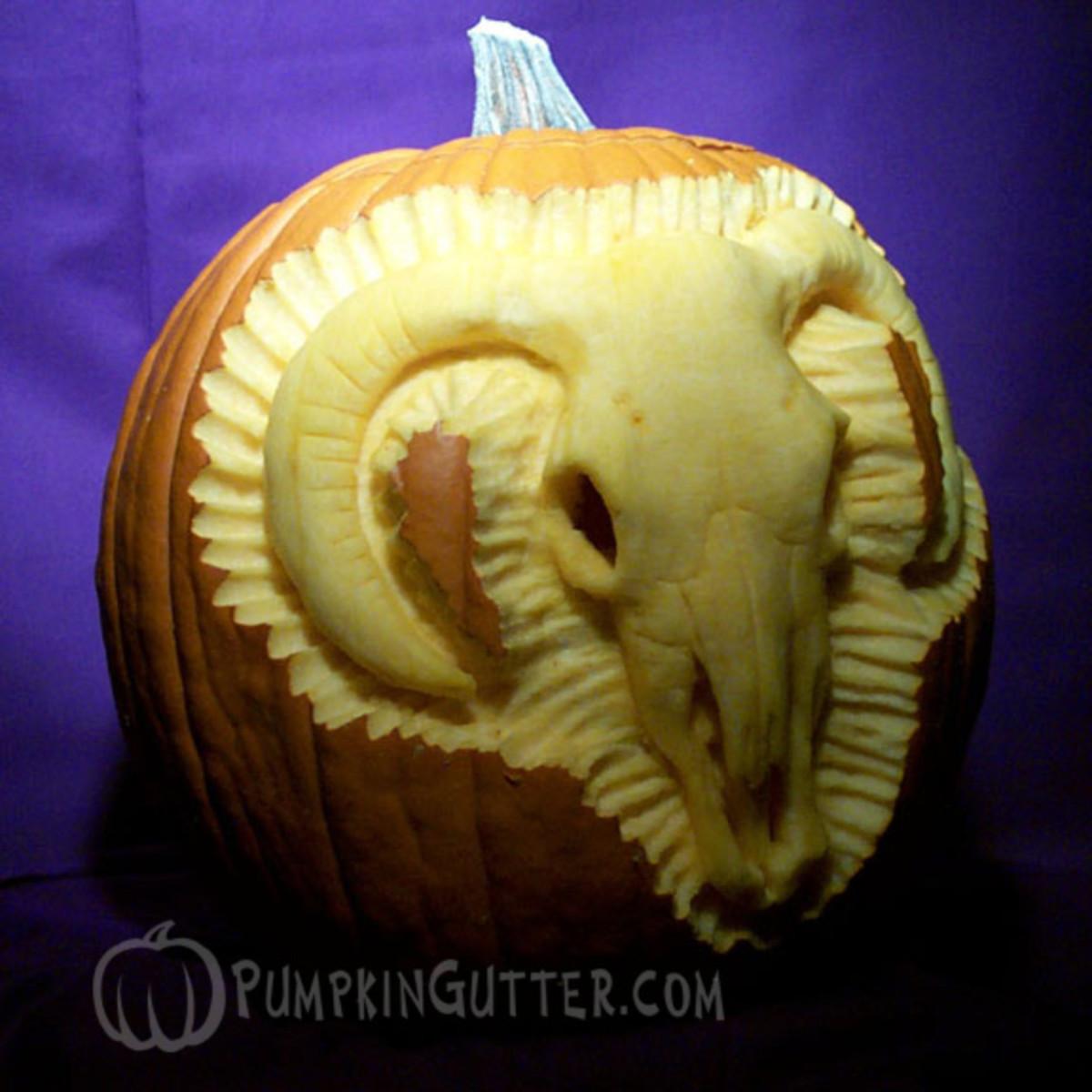 Cattle skeleton pumpkin