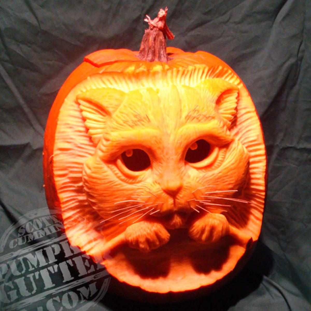 Puss in Boots pumpkin, Shrek