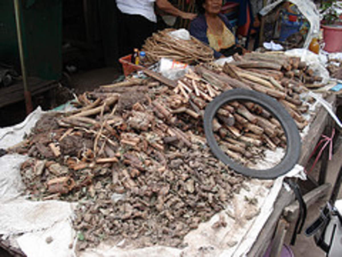 Some of the ingredients added to Lao Khao to turn it into Yaa Dong