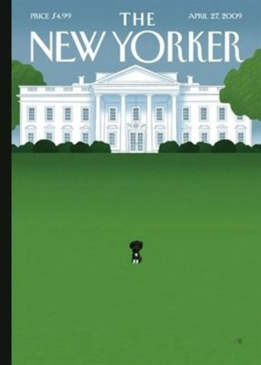 Bo makes the cover of The New Yorker