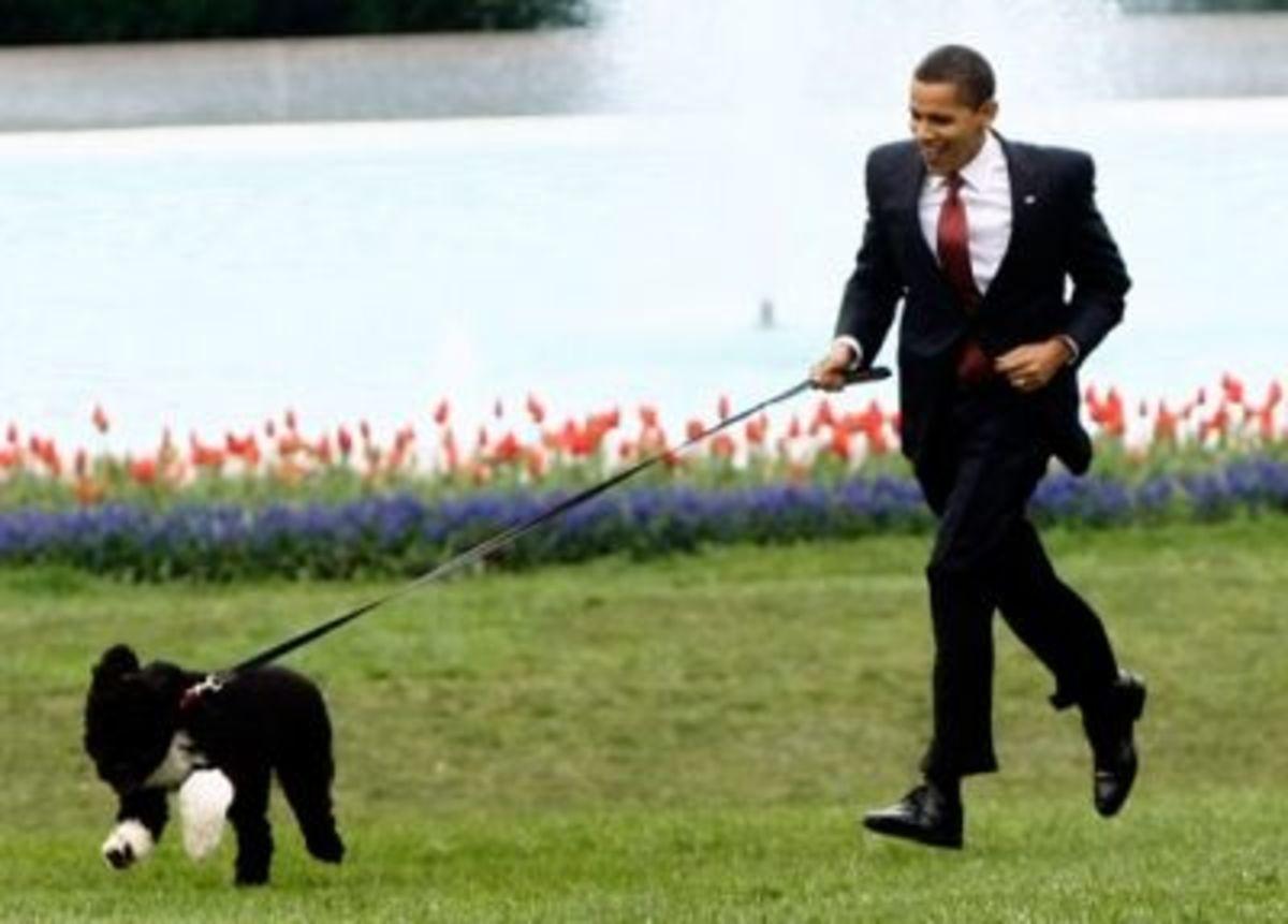 Barack and Bo