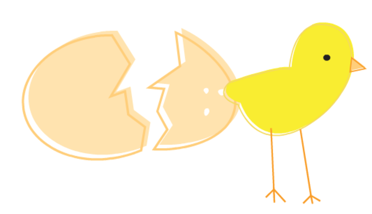 Baby chick coming out of cracked eggshell Easter clipart