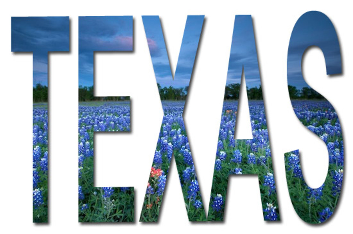 A picture I created in Photoshop using the word Texas and a beautiful picture of the field of Texas bluebonnets.
