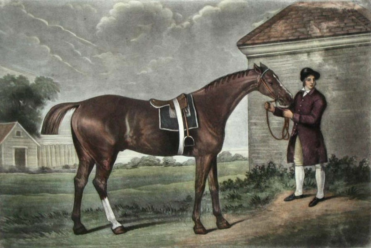 This is one of George Stubbs' many portraits of racehorses, painted at Newmarket, close to the famous English racecourse