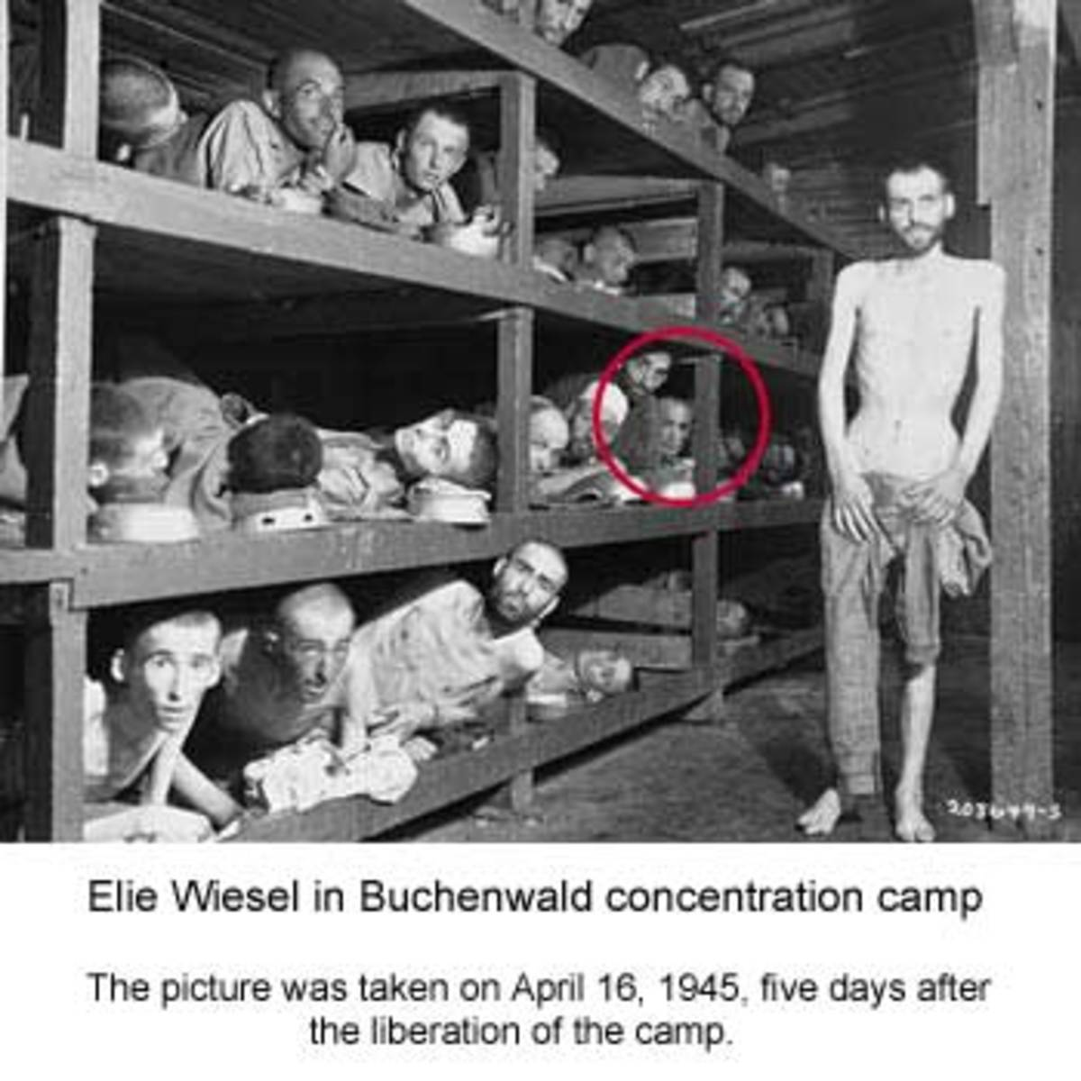 concentration-camps-in-america-and-hr-645