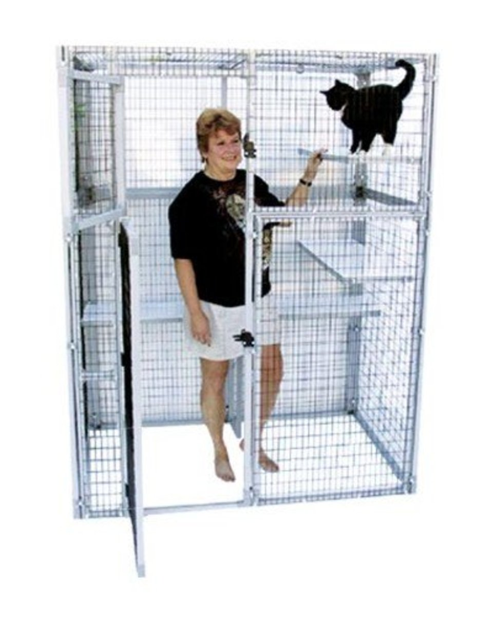 appropriate indoor or outdoor cage for your cat photographic guide