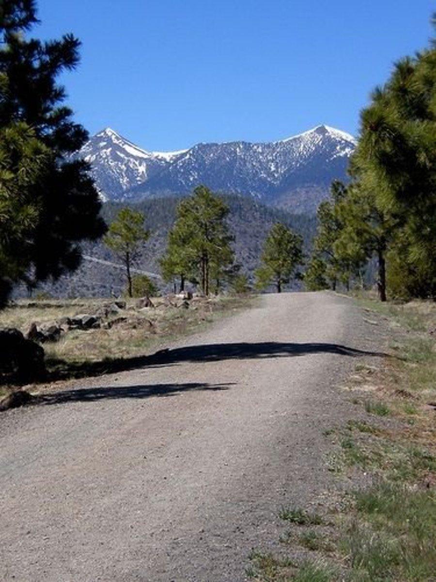 The Flagstaff Urban Trail System