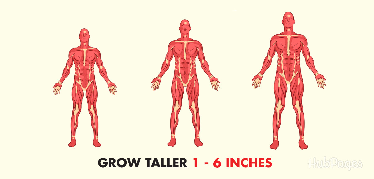 Grow up to six inches taller in six weeks!