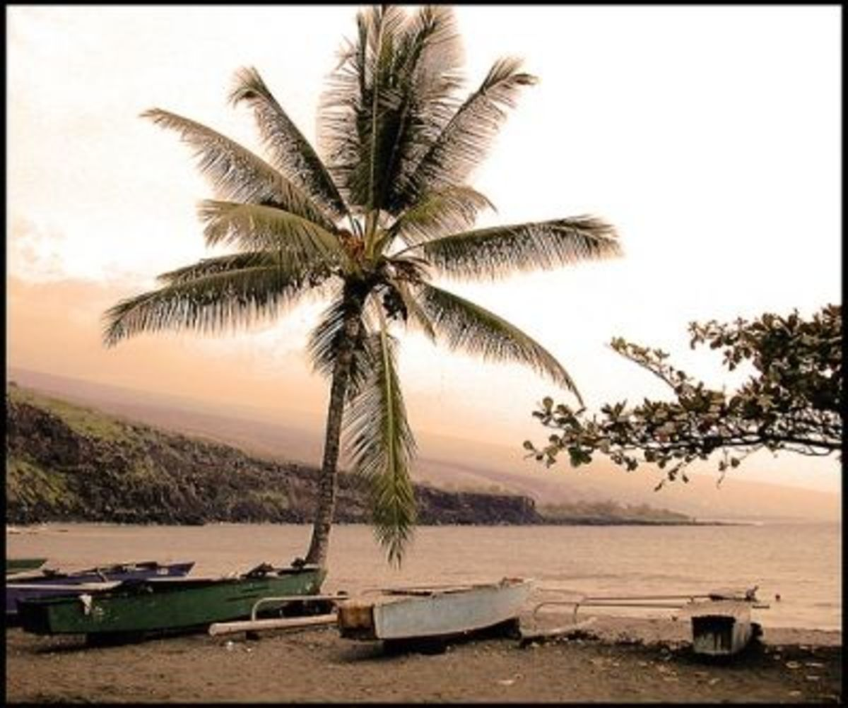 Ho'okena Beach Park