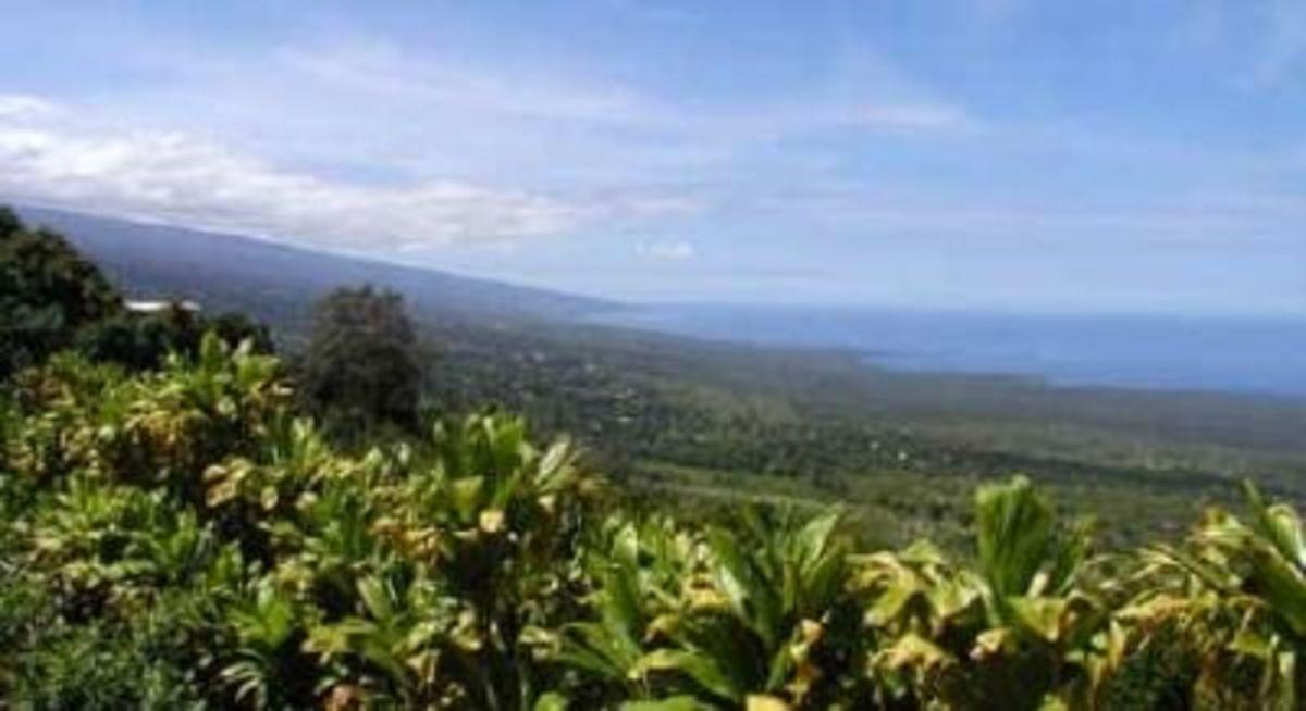 Honaunau Coastline ~ South Kona