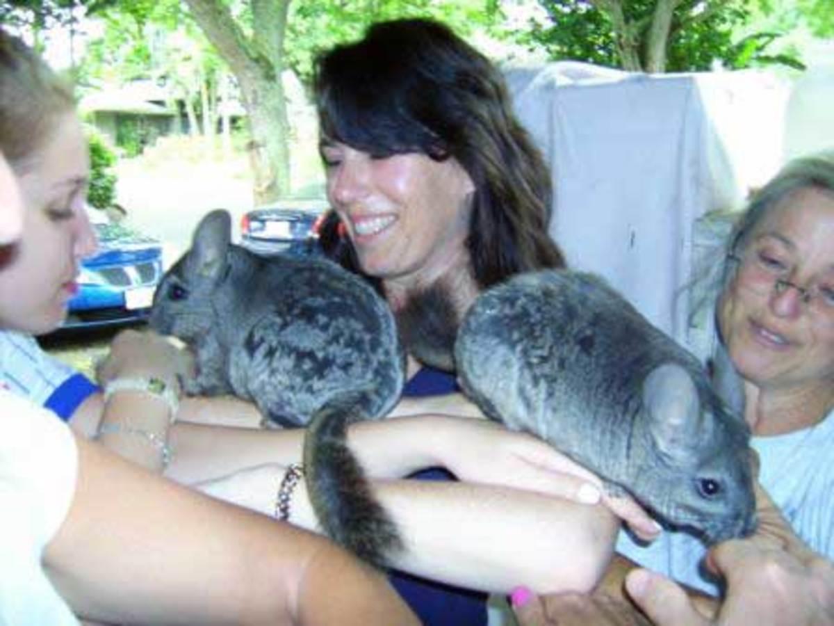 Three Ring Ranch Exotic Animal Sanctuary