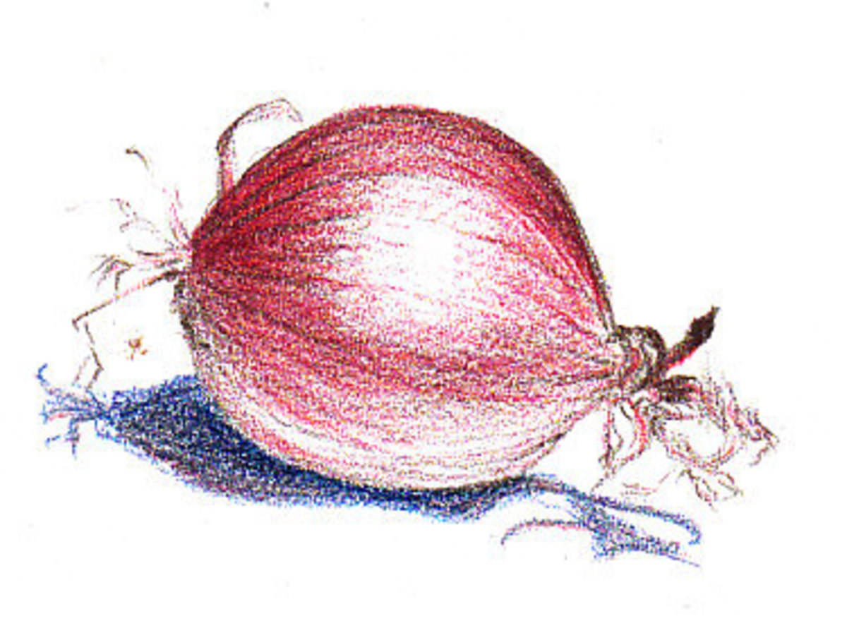 Onion stage two: red has been added both to the onion and the shadow. Robert A. Sloan