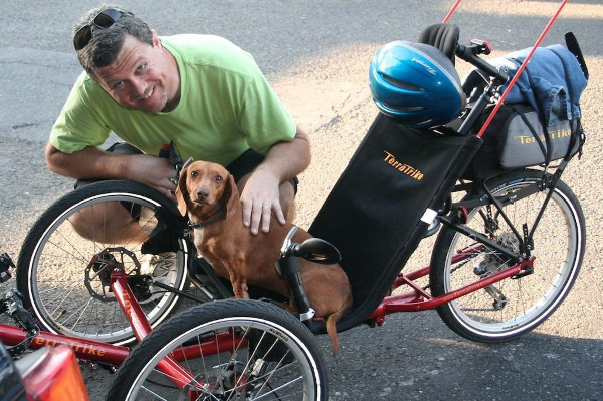 Even Dachshunds like trikes!