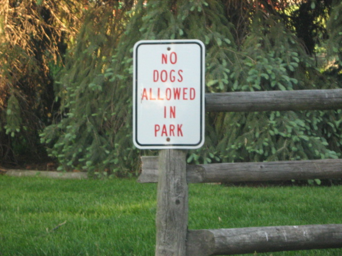 "A different park on the northern end of Hinsdale surprising says ""No Dogs"" when there are so many in the community"
