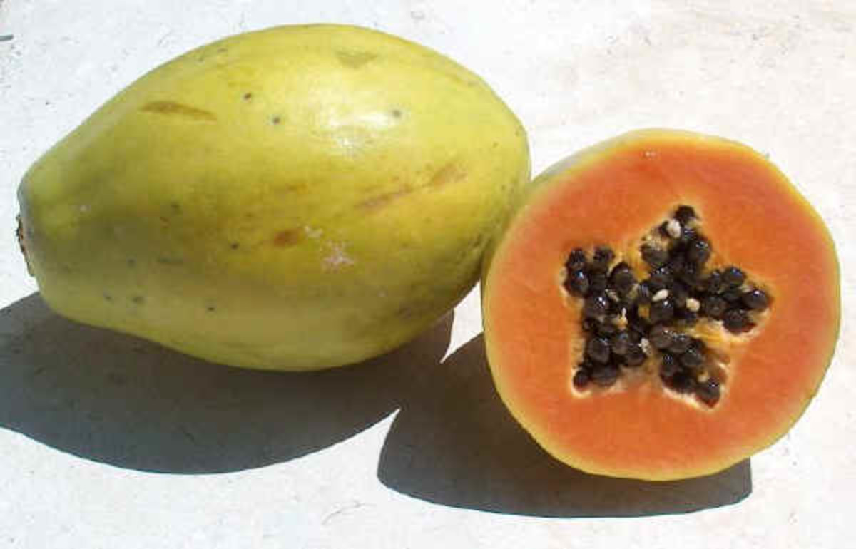 Why Shouldn't Pregnant Women Eat Papaya?
