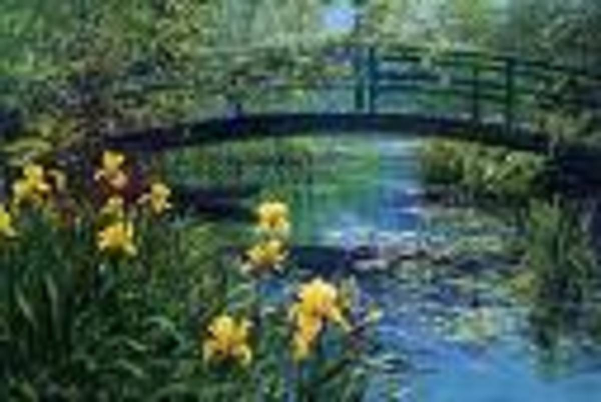 Bridge over a pool of lilies