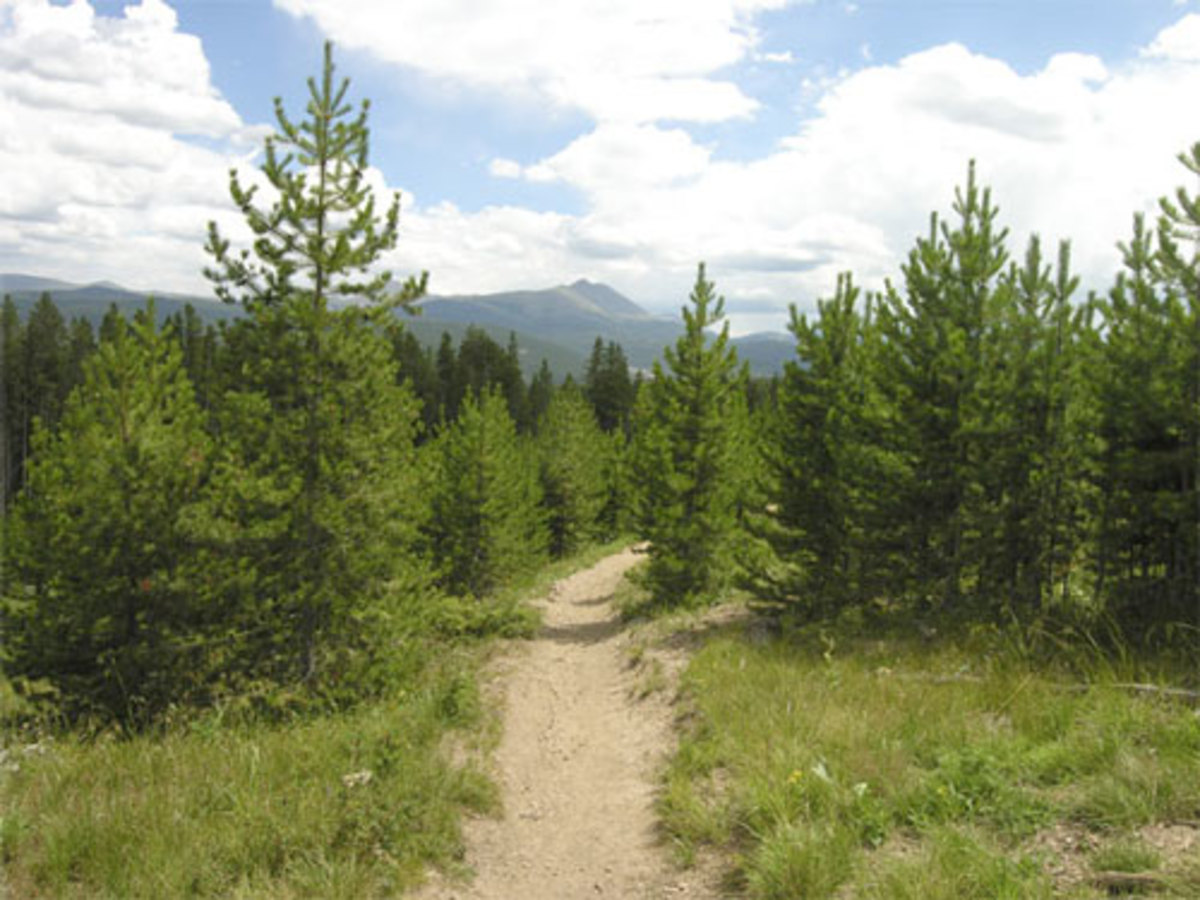 Hike or bike this single track in Breckenridge