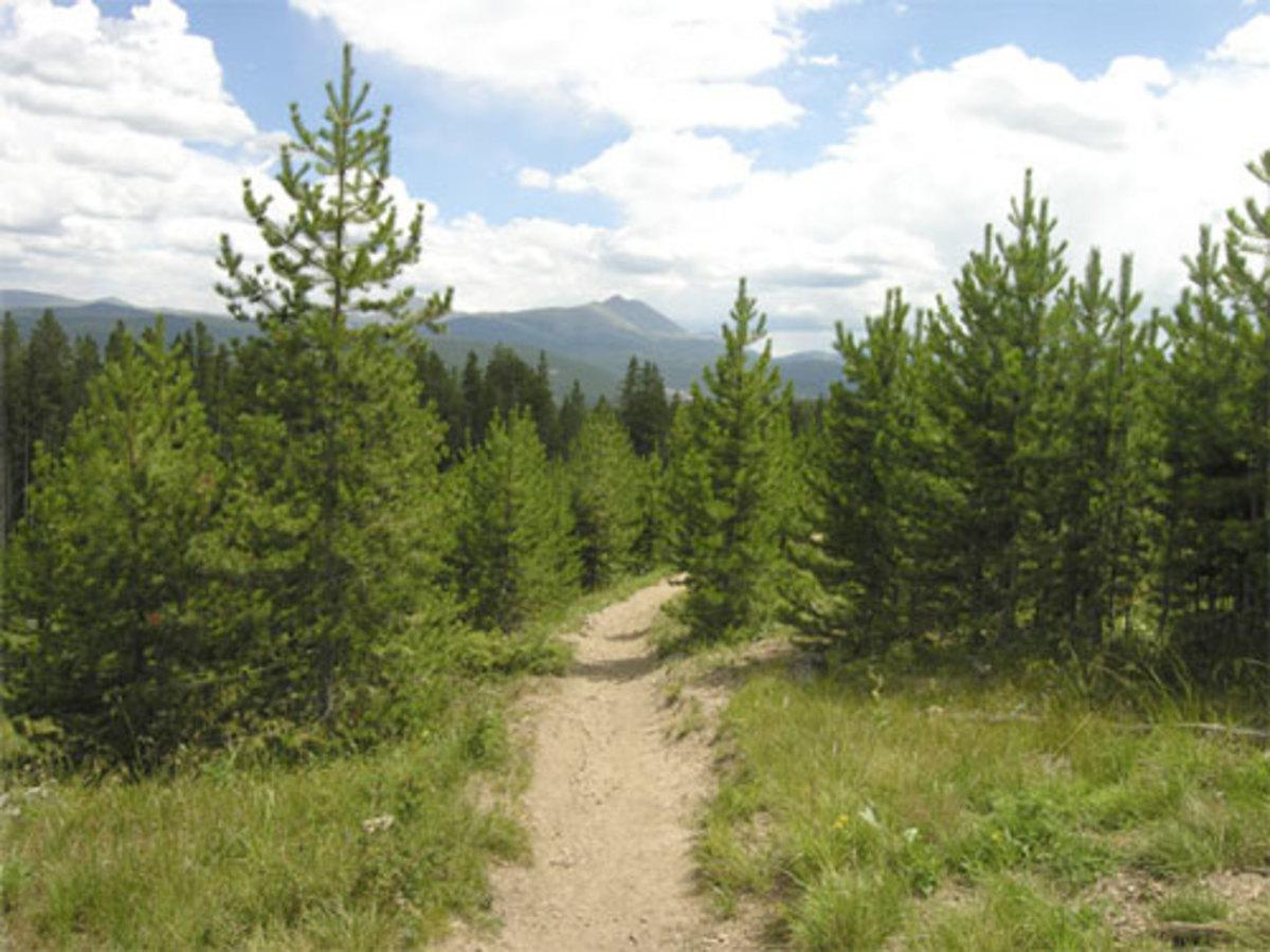 Hike or bike this single track in Breckenridge