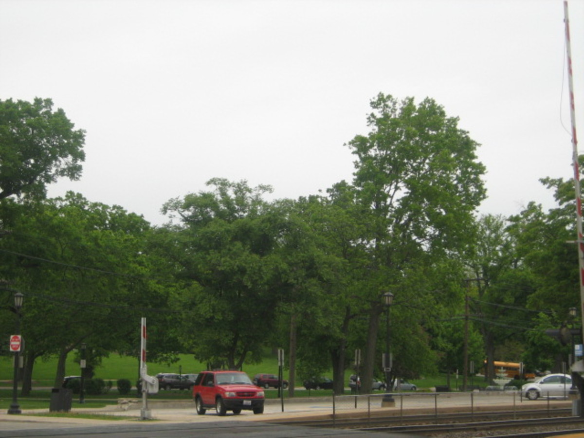 View of train depot parking lot and the park in Downtown Hinsdale