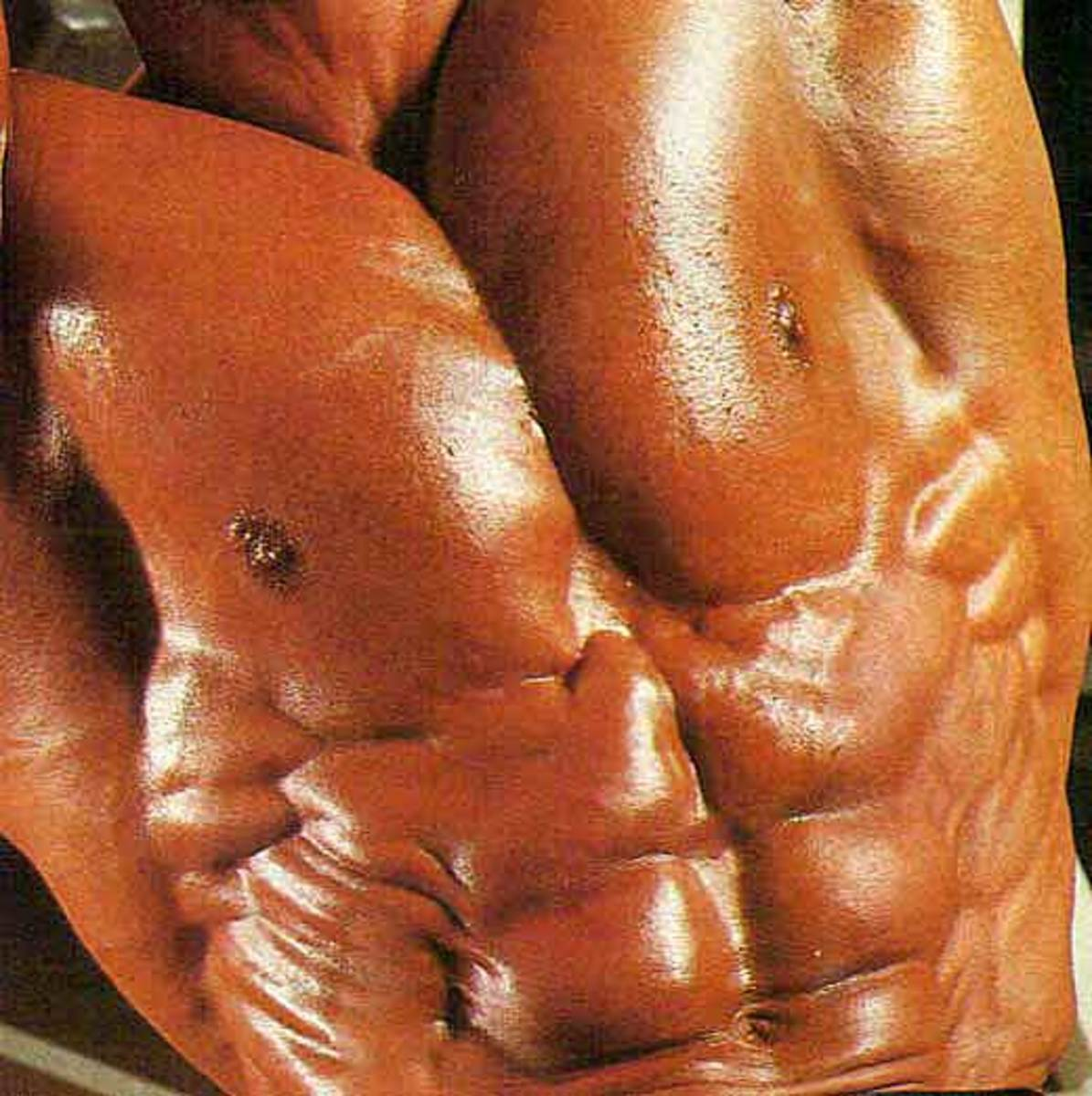 Serratus: Paying Attention To Detail