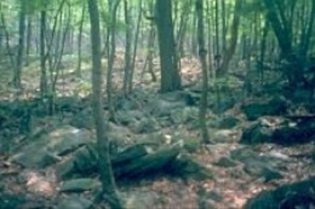 """A very rocky Appalachian Trail in Pennsylvania -- """"Where hiking boots go to die"""""""