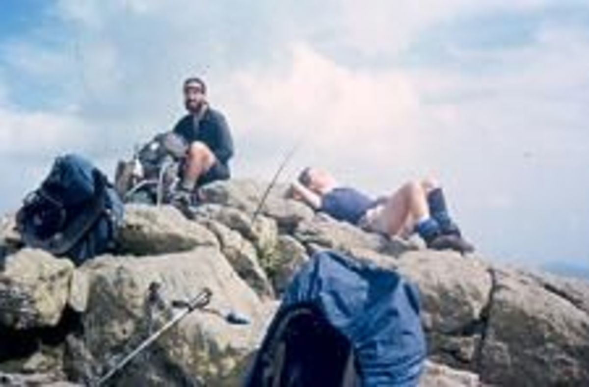 The Appalachian Trail in New Hampshire