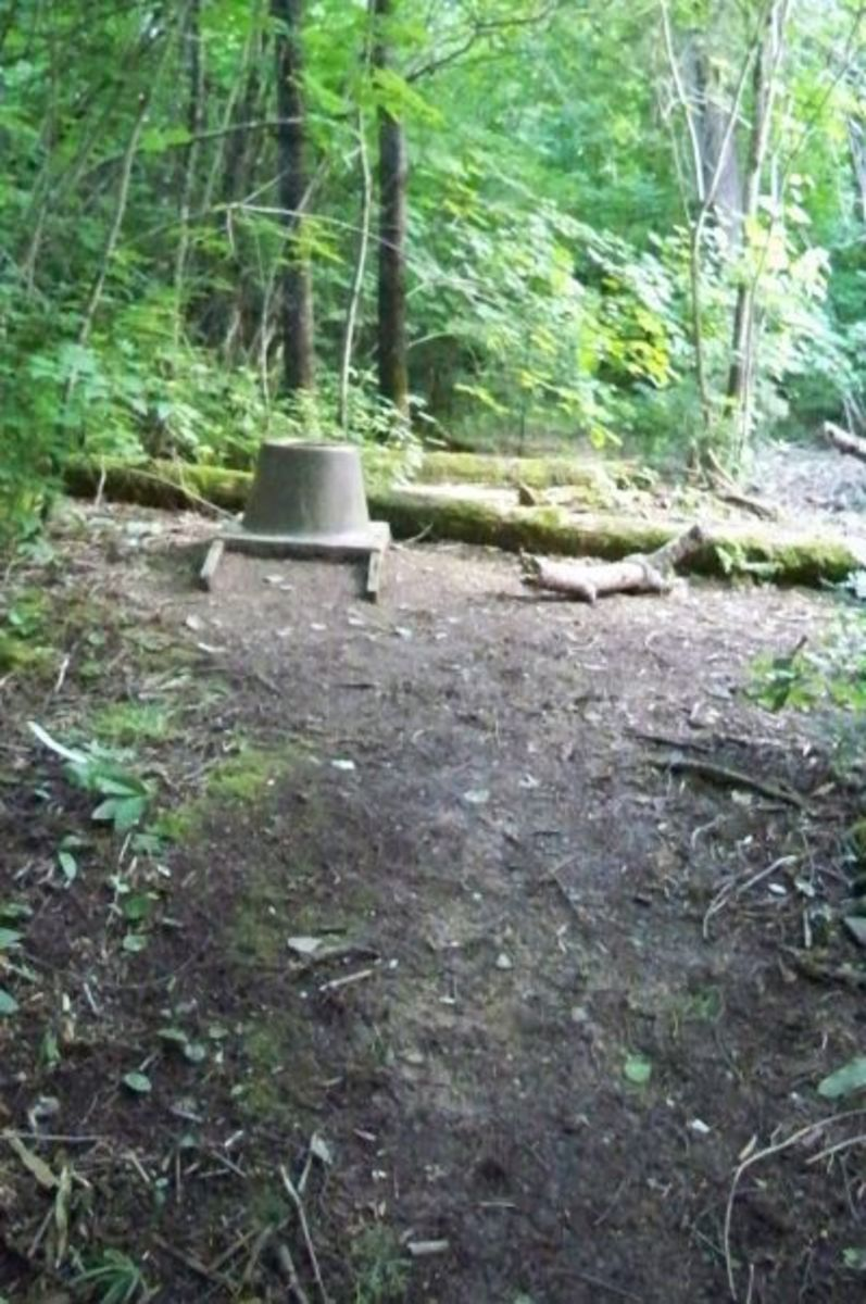 Each campsite has an open-air, pit potty, complete with backside biting mosquitoes in the summer.