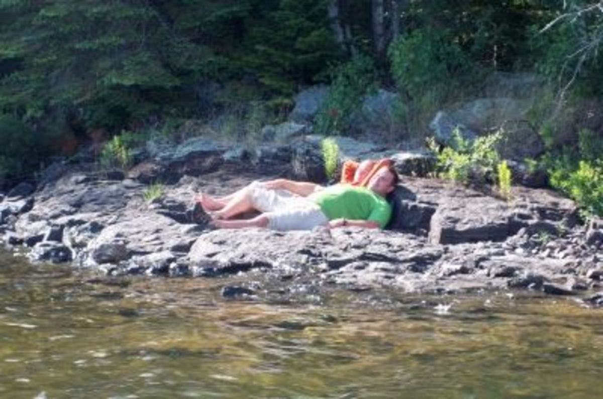 Chillin' on the sun-baked rocks